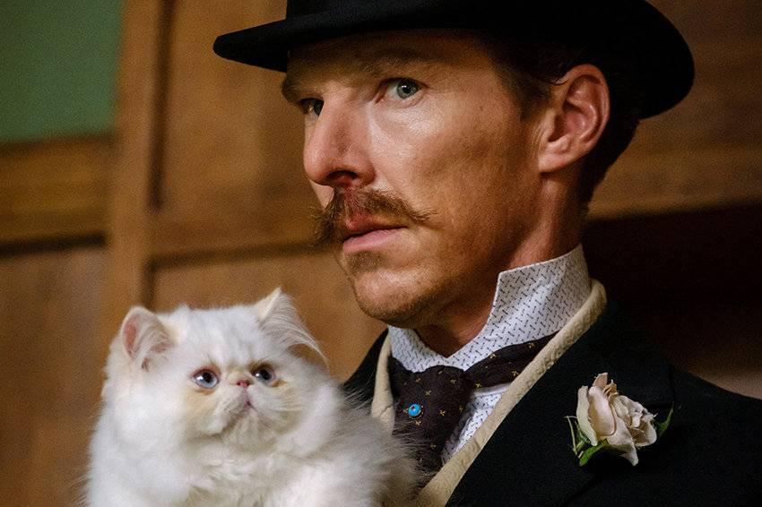 Впрокат выходят «Кошачьи миры Луиса Уэйна» сБенедиктом Камбербэтчем